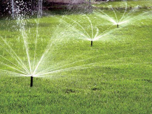 Why Professionally-Installed Lawn Irrigation Makes All the Difference