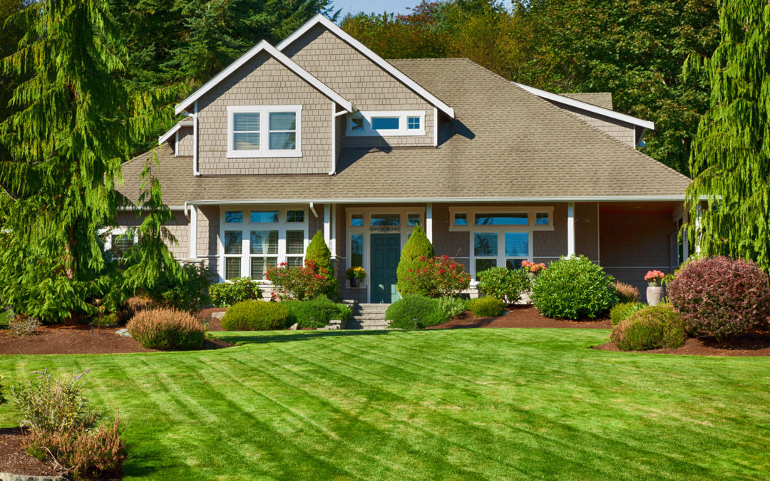 3 Tips to Keep Your Lawn in Top Shape