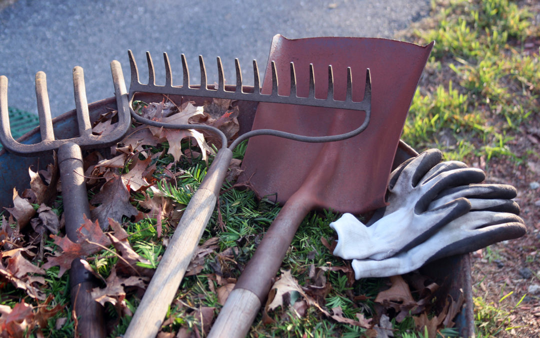 Our Spring Cleanup: What You Get From Croix